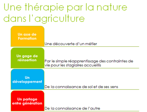 logo therapie par la nature